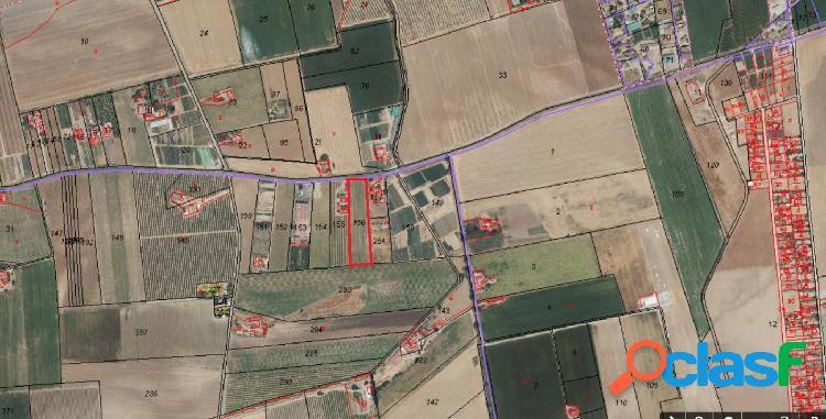 Terreno de siembra de 12.250 m2, fachada a la carretera.