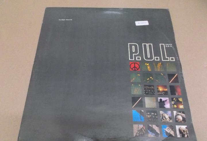 P.u.l. feat g.b.n. (maxi) the bigger neccesity (5 tracks)