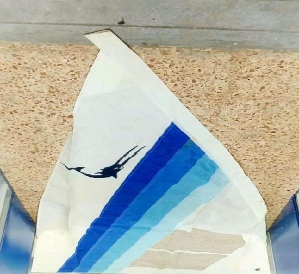 Vela delisa para windsurf u otros (430 cm x 250 cm ancho