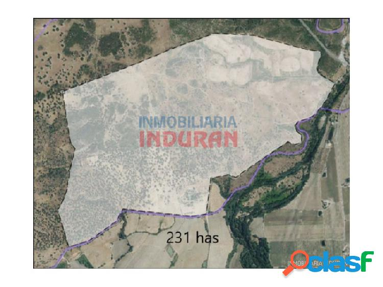 Finca de 231 ha con casa rural en cáceres