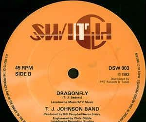"""T. j. johnson band - i can make it (good for you) (12"""")"""