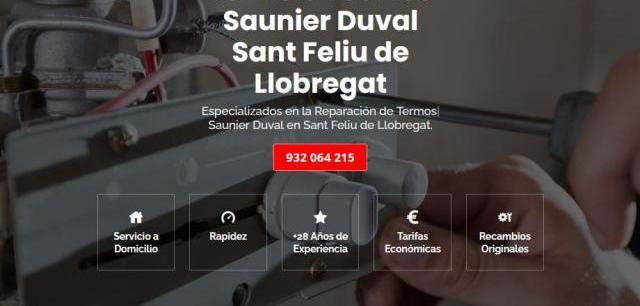 Servicio técnico saunier duval sant feliu de llobregat 934