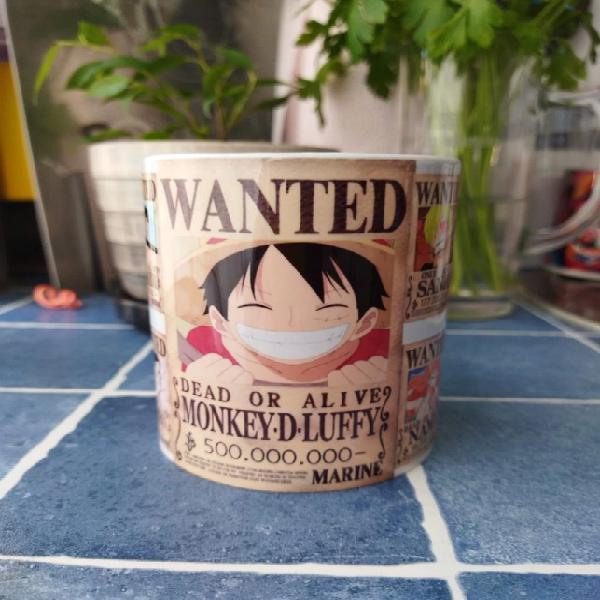One piece wanted coupe