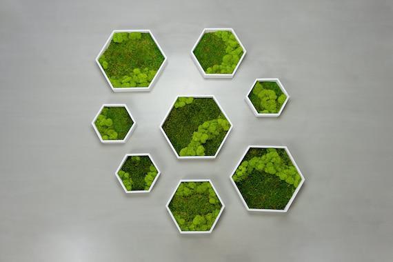 Pared de musgo / arte de pared verde / musgo preservado /