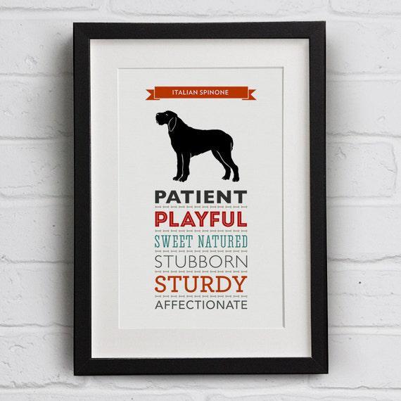 Italiano spinone perro raza rasgos impresión - gran regalo