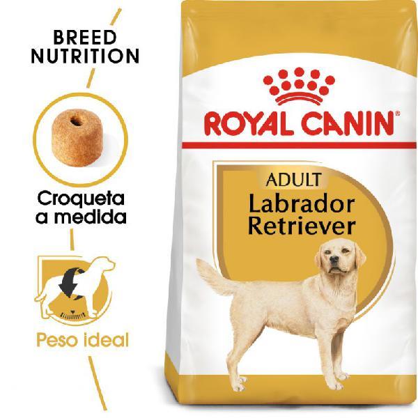 Royal canin labrador retriever adult