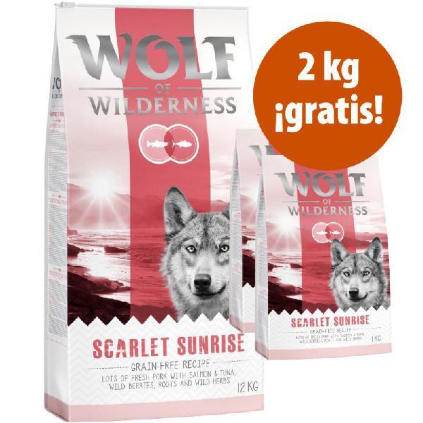 Wolf of wilderness 14 kg pienso en oferta: 12 + 2 ¡gratis!