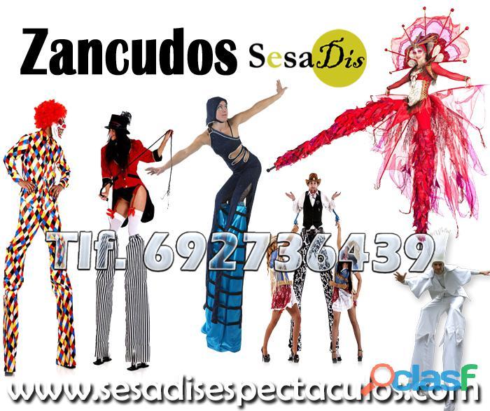 Zancudos, Zancos, Zanquitas